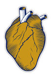 Human heart icon Royalty Free Stock Images