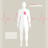 The Human Heart royalty free illustration