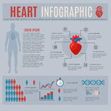 Human Heart Infographics Stock Photos