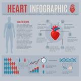 Human Heart Infographics Stock Photos