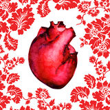 Human heart isolated on flower background Royalty Free Stock Photo