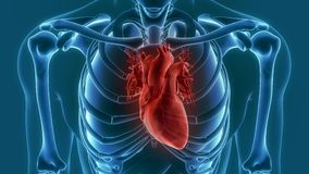 Human heart pain 3d rendering Stock Photography