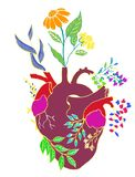 HUMAN HEART AND PLANT vector illustration