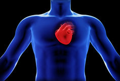 Human heart x-ray concept. Part of a medical series Stock Image