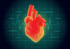 Human heart red color on pulse monitor background. Illustration about heart disease symptoms Royalty Free Stock Image