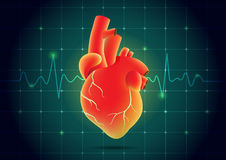 Human heart red color on pulse monitor background. Royalty Free Stock Photos