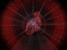 Human heart scan Royalty Free Stock Image