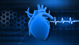 Human heart. On science  background Royalty Free Stock Photography