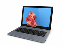 Human heart on a screen of notebook. Royalty Free Stock Photos
