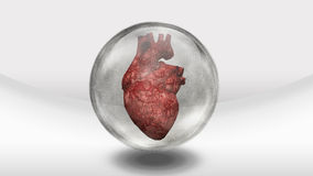 Human heart in sphere stock illustration