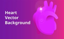 Human Heart Vector Background Stock Images