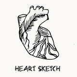 Human heart vector illustration Stock Photo