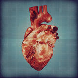 Human heart vintage blueprint Royalty Free Stock Photos