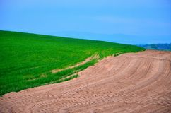 Human impact Nature scene. Divided scene with sand, grass and blue sky. Human impact on the nature Stock Image