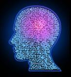 Human intelligence puzzle Royalty Free Stock Photos