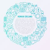 Human internal organs concept in circle. With thin line icons. Vector illustration for banner, web page, print media Royalty Free Stock Images