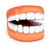 Human jaw and white tooth. 3d illustration Stock Photo