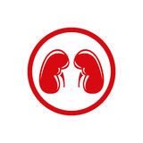 Human Kidney. Single flat icon. Vector symbol. Stock Photo