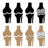 Human knee joint symbols Royalty Free Stock Images