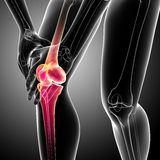 Human knee pain Stock Photography