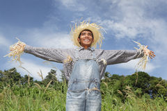 Human laughing scarecrow Royalty Free Stock Image