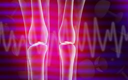 Human leg bone Stock Photography