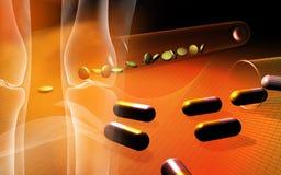 Human leg bone, tablets and capsules Royalty Free Stock Photos