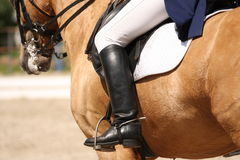 Human leg on horse Stock Photos