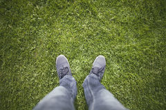 Human legs on green grass. Top view man legs with shoes on green sunny grass Royalty Free Stock Image