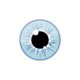 Human light blue eyeball iris pupil isolated on white background. Eye Stock Image