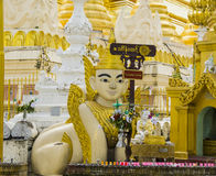 A Human-Lion sculpture and a Buddha statue at Shwedagon Pagoda. Myanmar Sphinx, a human-lion mythical creature known in Myanmar as manussiha. Devotee offer stock images