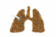 Human lung and cancer made by tobacco and cigarette. Isolated on white background royalty free stock images