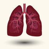 Human Lung icon Royalty Free Stock Photo