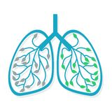 Human Lung Icon. Health care Royalty Free Stock Images