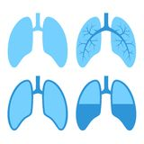 Human Lung Icons Set Stock Photo