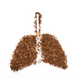 Human lung made from tobacco isolated with cigarette on white Stock Photos
