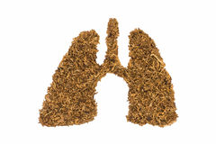 Human lung made by tobacco Royalty Free Stock Photos