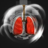 Human lungs. In abstract digital design Stock Images