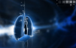 Human lungs. Digital illustration of human lungs in colour background Stock Photos
