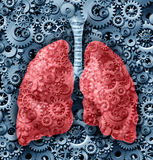 Human lungs Function Royalty Free Stock Photos
