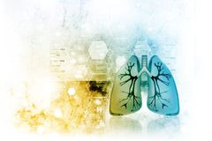 Human lungs. In scientific background royalty free illustration