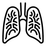 Human lungs icon, outline style. Human lungs icon. Outline human lungs vector icon for web design isolated on white background stock illustration