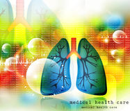 Human lungs pulmonary system. Digital illustration of Human lungs pulmonary system Royalty Free Stock Photo