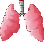 Human Lungs respiratory cartoon Royalty Free Stock Photo