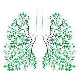 Human lungs. respiratory system. Healthy lungs. Light in the form of a tree. Line art. Drawing by hand. Medicine. Stock Photo