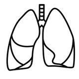Human Lungs Symbol Royalty Free Stock Image