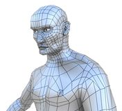 Human male mesh torso with head Royalty Free Stock Images