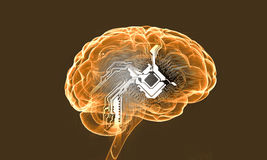 Human mind. Science image with human brain on yellow background Stock Photos