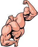 Human muscle body Royalty Free Stock Photo