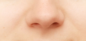 Human nose Stock Images